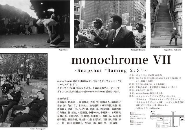 monochrome VII展