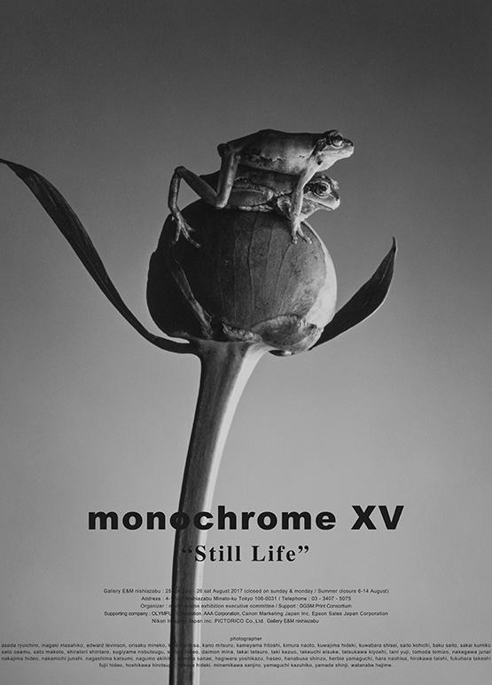 monochrome XV「Still Life」